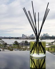 best-smelling-diffusers